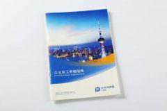样本印刷设计排版-太平洋保险