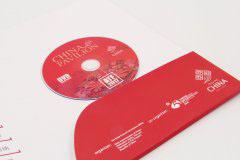 封套设计印刷排版-CHINA PAVILION