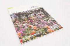 杂志印刷设计排版-绿笔乘风-1