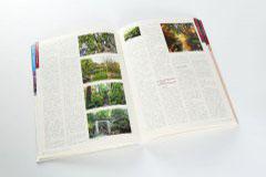 杂志印刷设计排版-绿笔采风