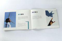 宣传册设计印刷排版-赫格纳斯